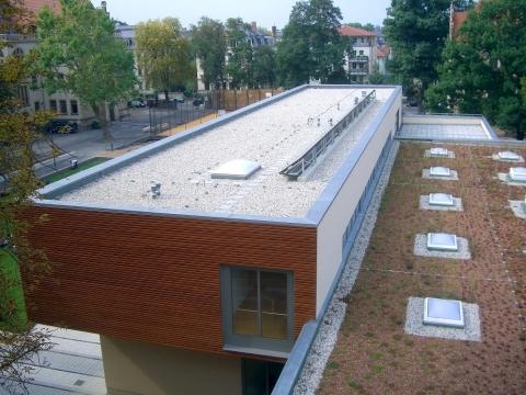 Meisterdach online Kreuzgymnasium Dresden